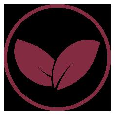 Iconos web queralt homeopatia